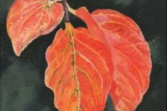 1437 Turning Leaf XIV