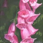 1538 Steve's Flowers #1