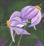 1539 Steve's Flowers #2