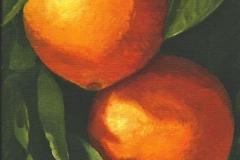 1605 Oranges #125
