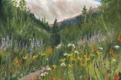 1738 MK, Nature Trail