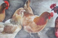 1749 Flock