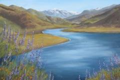 771 lake view