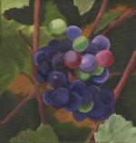 Grapes VII 1321.jpg