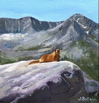 1535 Marmot