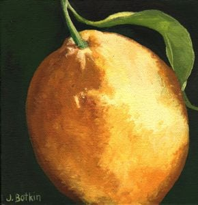 1543 Lemon #19