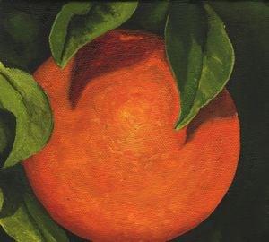 1546 Orange 124
