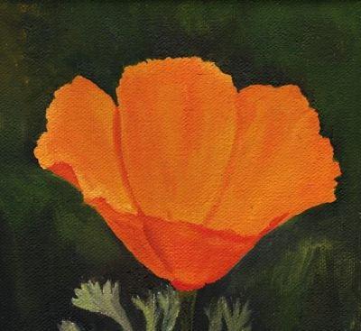 1610 Poppy 45