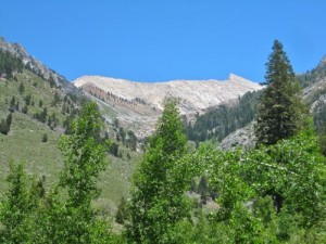 There are great views of Sawtooth Peak along the Nature Trail.