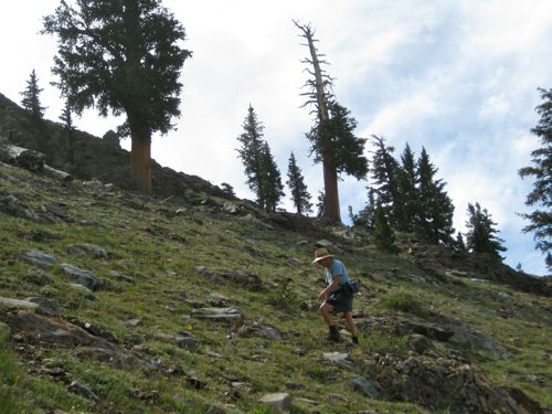 Trail Guy is heading up to Empire, Mineral King, photo by Jana Botkin