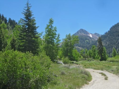 Vandever Peak in Mineral King
