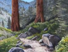 Sequoia Outdoor Sports