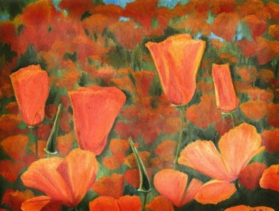 Poppies XXXII 1403
