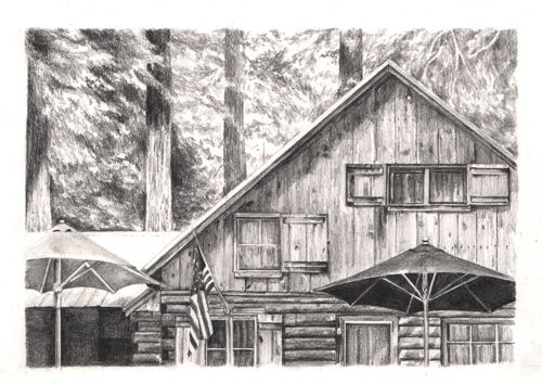 Wilsonia cabin pencil drawing